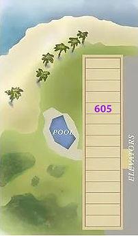 Mana Kai Property 605.jpg