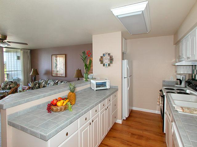 Kitchen - Condo 201