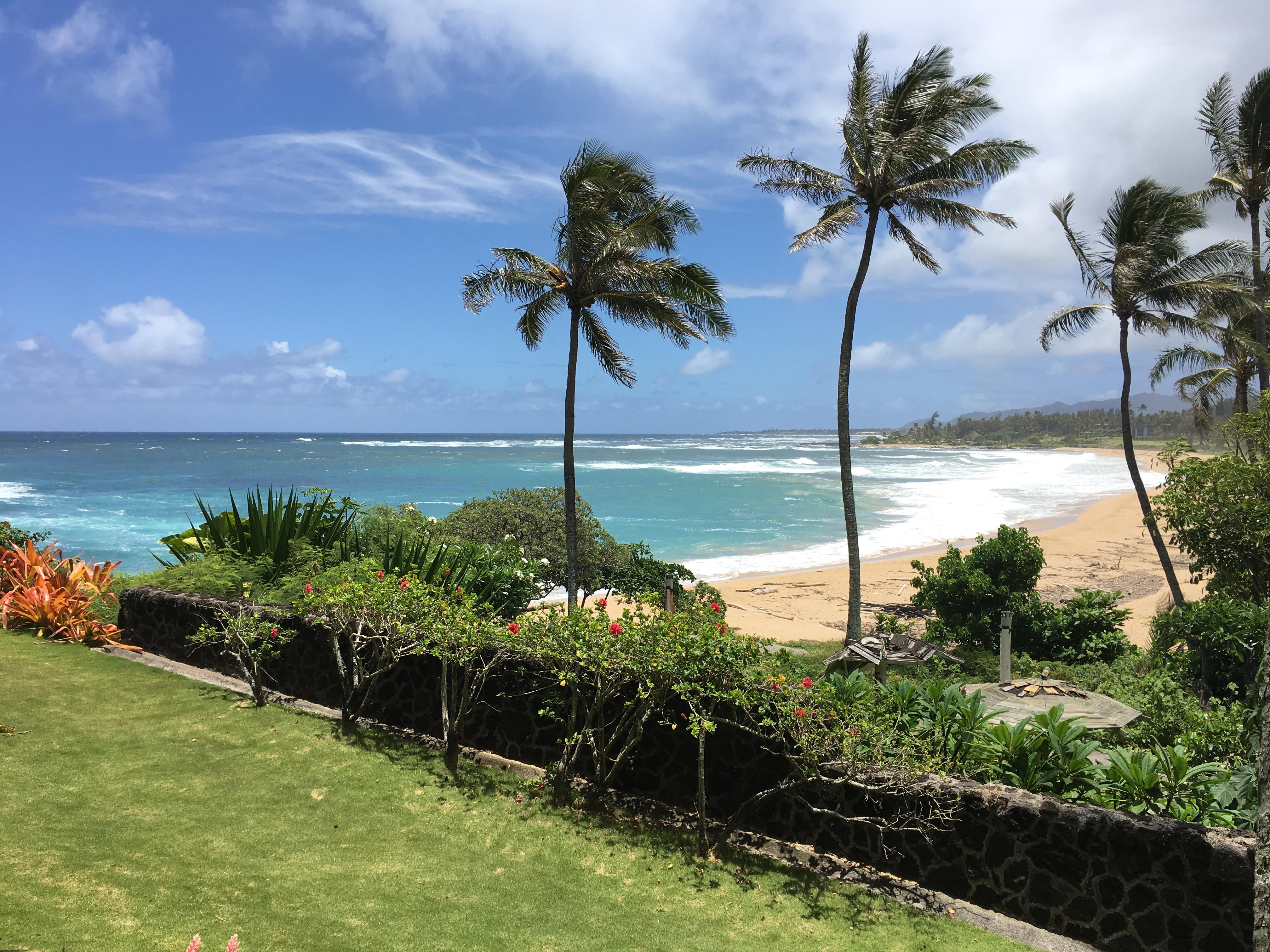 Surfing beach on Kauai east coast