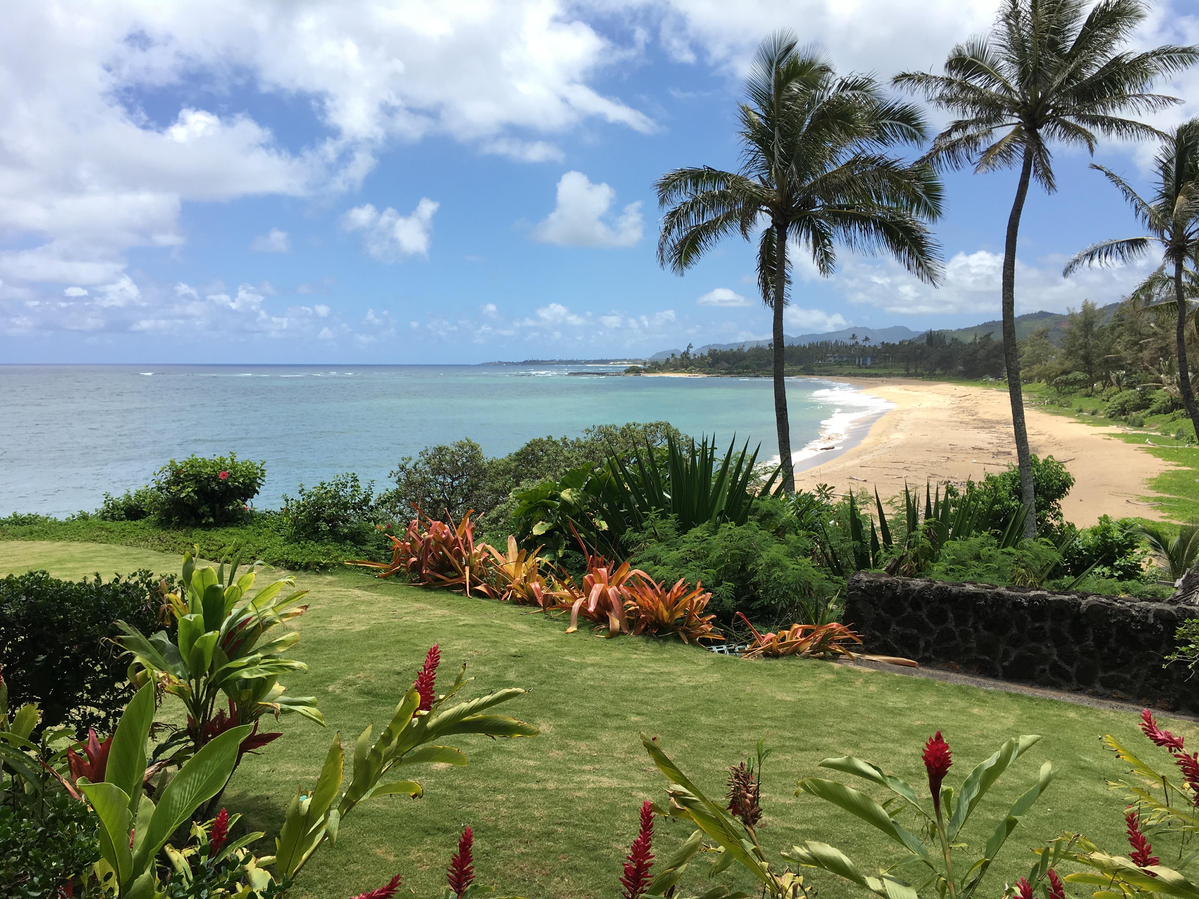 Wailua Bay View #105 view
