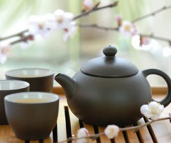 Kompost-Tee: der einfache Biodünger