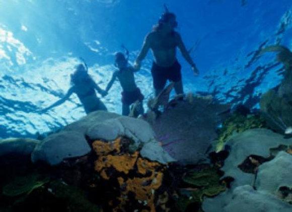 Almog reef Snorkeling