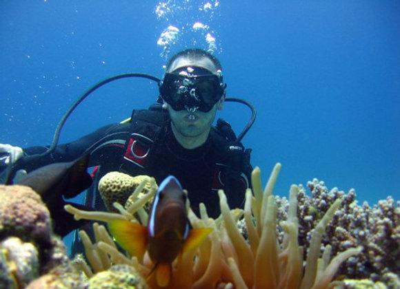 Scuba diving intro lesson