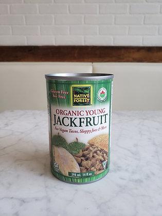 Organic Jack Fruit Can 398 mL