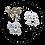 Thumbnail: DNA / NLPWM Actuator Metal Buttons