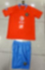 american orange 2020 copy.jpg