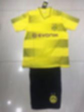 BORUSSIA YELLOW 1718.jpg