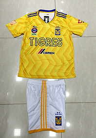 Tigres amarillo 1819.png