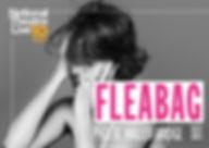 Fleabag-low.jpg