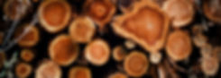 softwood-logs.jpg