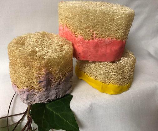 Bath Biscuits