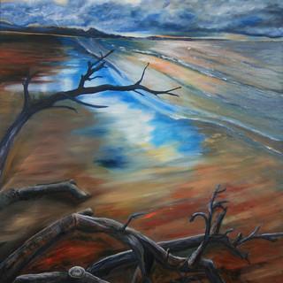 drifted on the tide.JPG