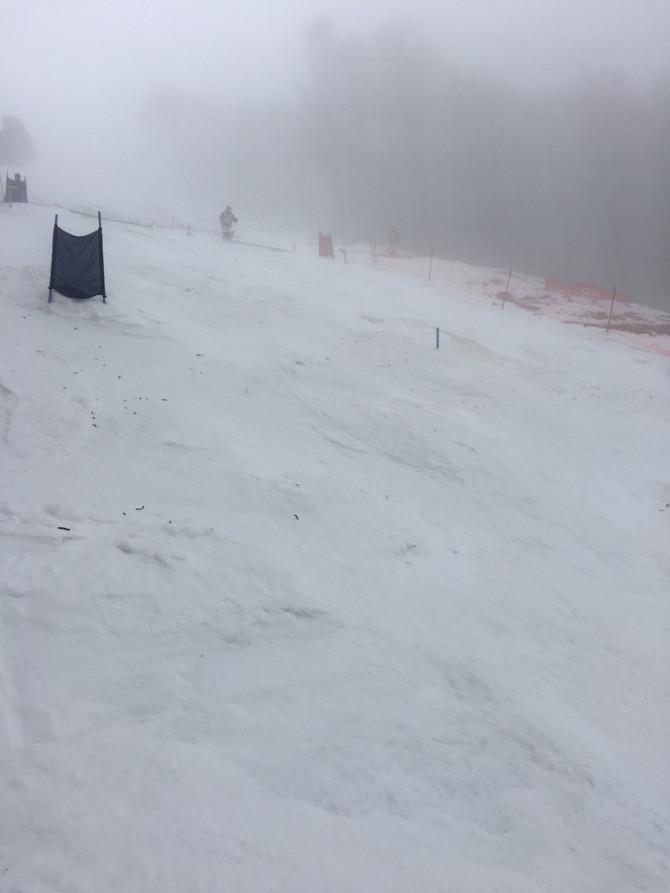 第39回全日本スキー選手権 猪苗代大会 フリースタイル競技「コーチ帯同」 ④大会1日目 シングルモーグル