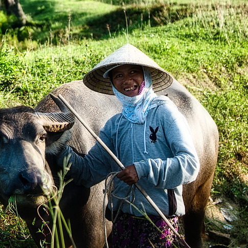 This lovely woman spends every day with her best water buffalo buddy. She has grown up in a small village and all she knows are these rice paddy fields and her best friend. Despite being domesticated, water buffalo are still extremely dangerous. Most farmers will steer far away from strangers in fear their buffalos will get spooked. But this pair let us walked right up to us with smiles. There was an evident comraderie that is apparent when two souls are meant to walk the earth together.