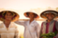 Image by Sandra Kusano. Three smiling Vietnamese women wearing conical hats in a field