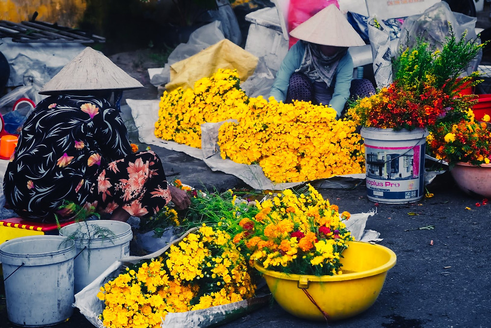 Vietnamese women wearing nón lá sorting fresh flowers on the ground in Vietnam