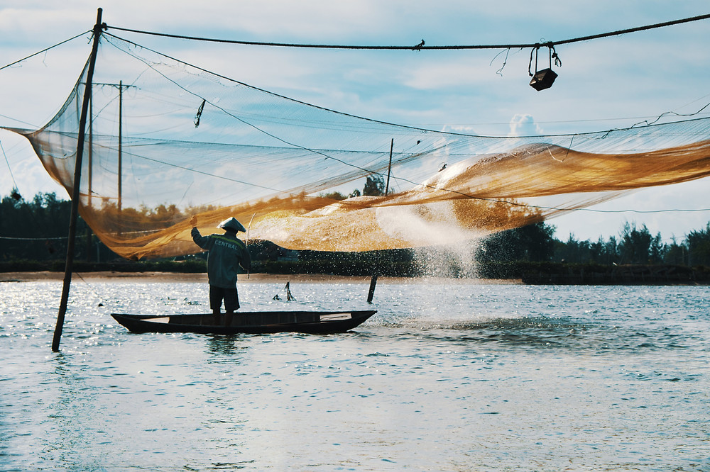Vietnamese fisherman wearing conical hat hitting net to attract fish while standing on his boat in the sun in Vietnam