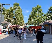 Platanen auf dem Neumarkt_Markttag.jpg