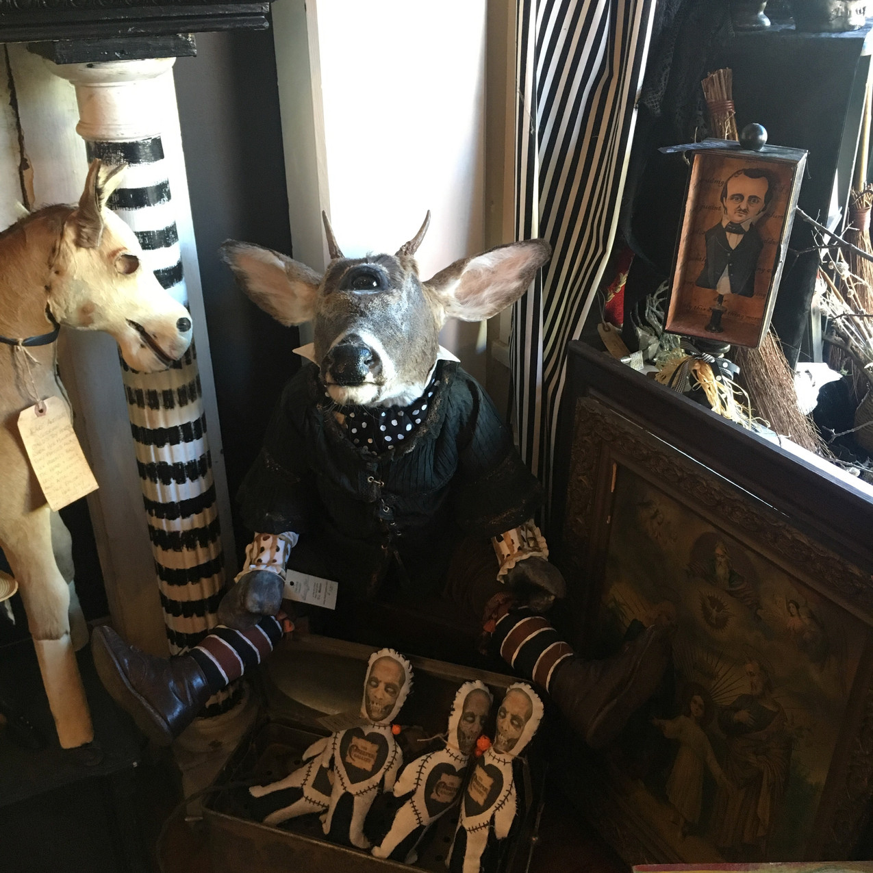 Cyclops goat at Creeper Gallery
