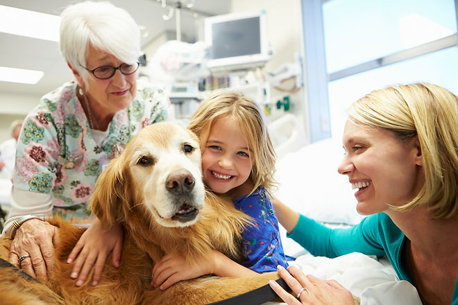 Young Girl Being Visited In Hospital By Therapy Dog.jpg