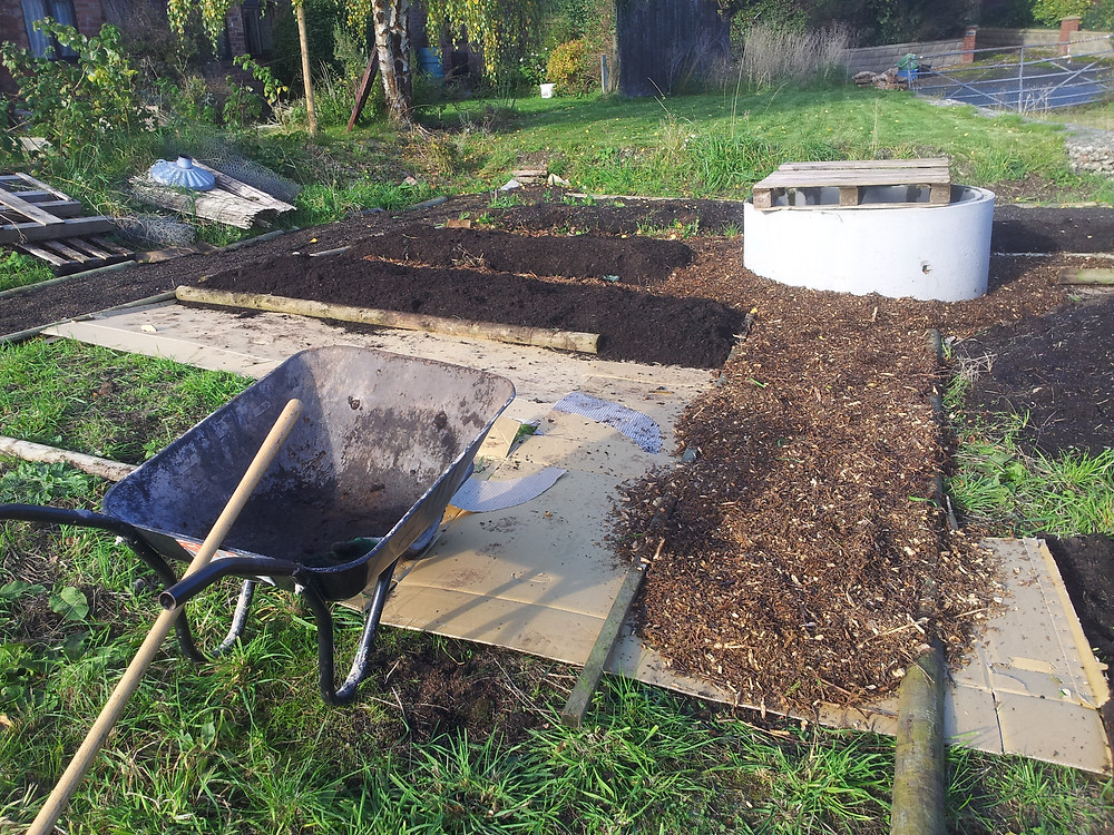 making raised beds from rough grass using cardboard and soil mulch
