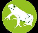 NG frog.png