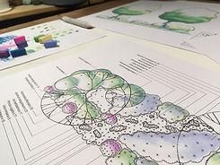 Native Planting Scheme