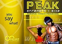 PEAK Leaflet Cover.jpg