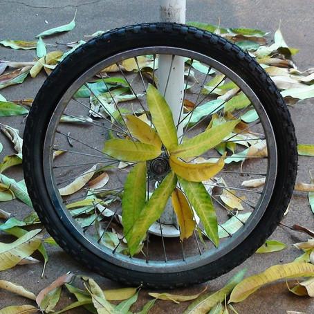 Vélo. Du nouveau dans la lutte contre le vol