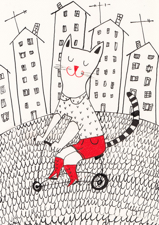 Cat on bycicle