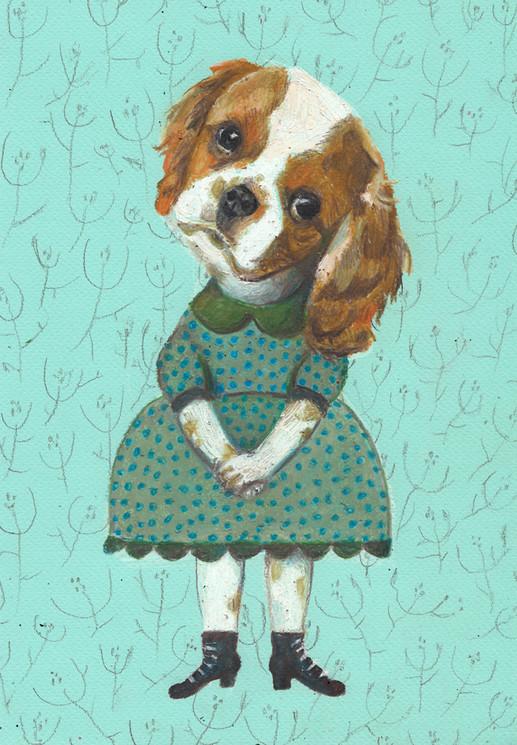 Shedog with dress