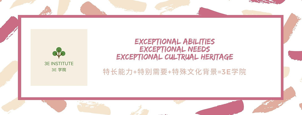 Exceptional abilities Exceptional needs