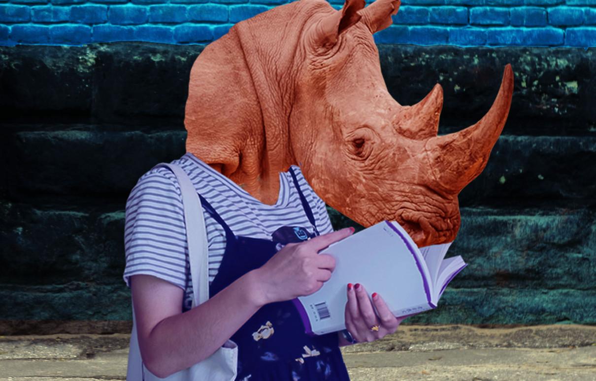 rhinoceros insta4.jpg