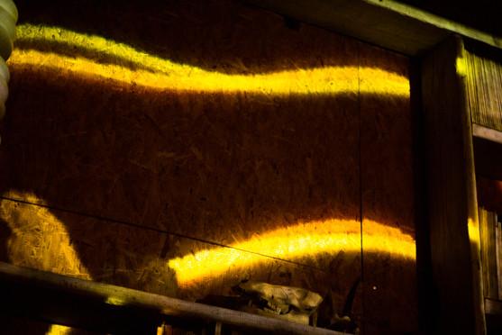 Acquario slideshow-43.jpg