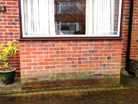 What types of Damp are there?