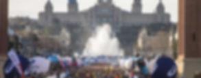 thumbnail_large (1).jpg