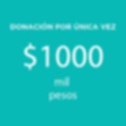 Web_Donaciones (1)-06.png
