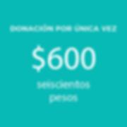 Web_Donaciones (1)-04.png