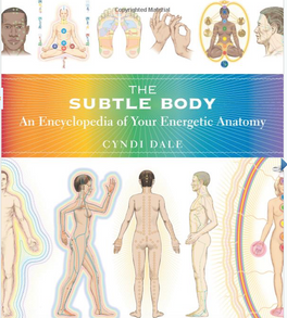 Book: The Subtle Body: An Encyclopedia of Your Energetic Anatomy