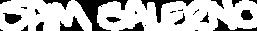 Sam Saleno Logo