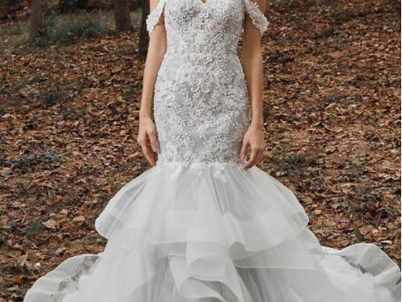 Amazing Wedding Dresses that do not break the bank