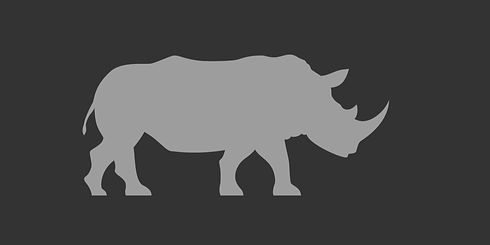 Rhino-Only-Display-Grey.jpg