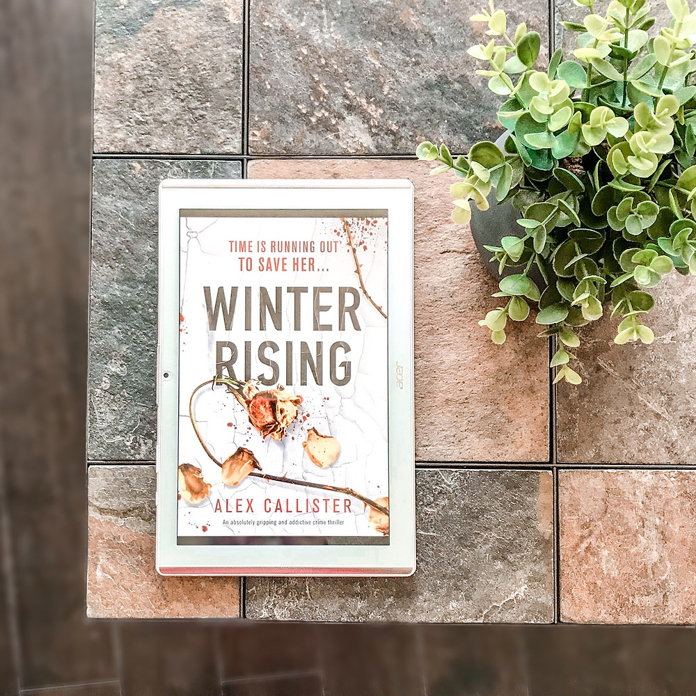 Book cover of Winter Rising