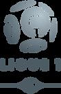 Logo_de_la_Ligue_1_(2008).svg.png