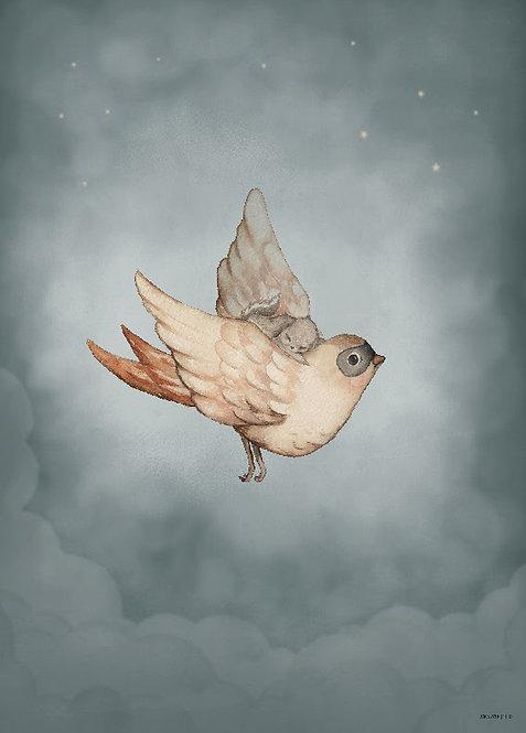 """Mrs Mighetto - Poster """"Dear Sparrow"""" 50x70 cm"""