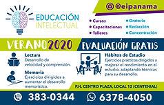 Educacion Intelectual 2020.jpg