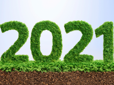 Seven Reasons Why You Should Make Recycling Your New Year's Resolution