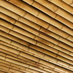 MISO GREEN SQUARE - GREEN SQUARE, NSW