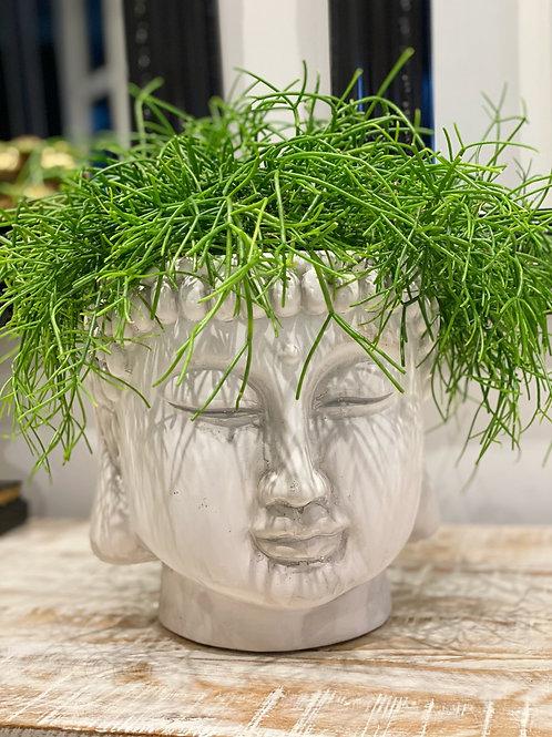 WHITE TERRACOTTA BUDDHA HEAD PLANTER