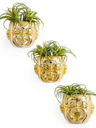 SET  OF 3 GOLD CERAMIC BABY FACE WALL POTS